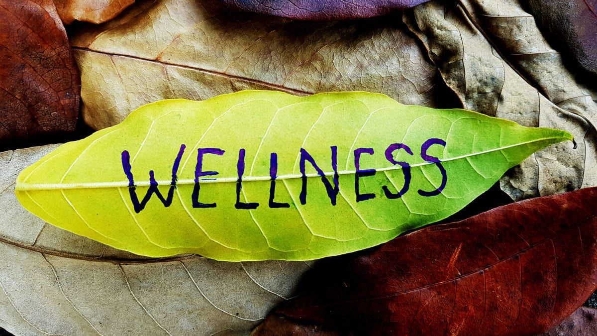 Leaf with word Wellness Written on it